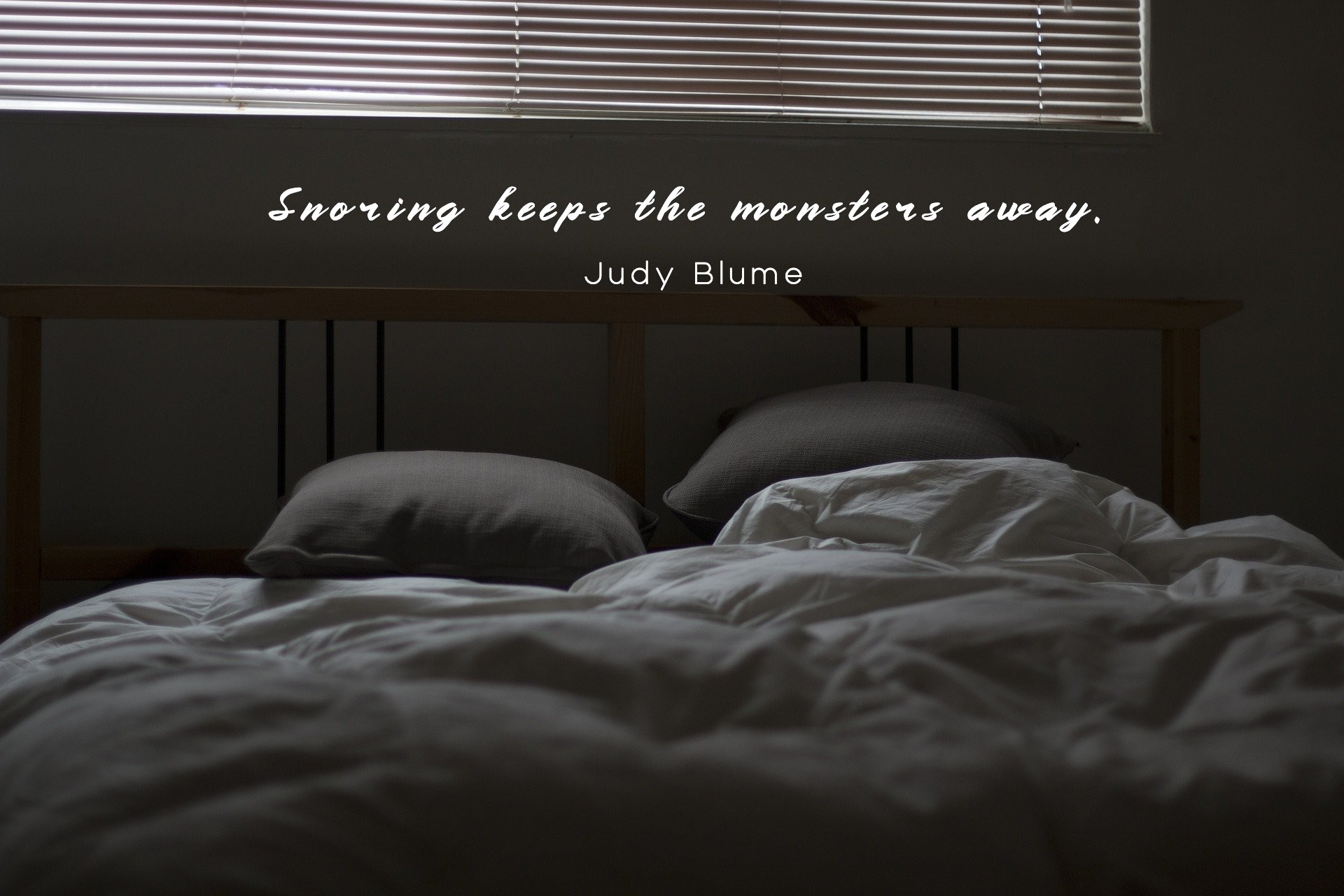 Snoring keeps the monsters away. - Judy Blume